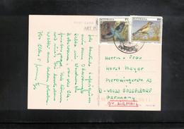 Botswana 2000 Interesting Postcard - Postage - Botswana (1966-...)