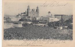 LAS PALMAS / GRAN CANARIA /  CATEDRAL Y ALRREDEDORES   1902 - Gran Canaria