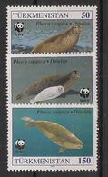 Turkmenistan - 1993 - N°Yv. 41 à 43 - Phoques / WWF - Neuf Luxe ** / MNH / Postfrisch - Altri