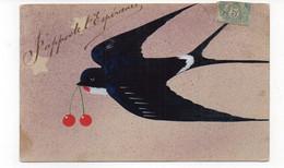 J'apporte L'Espérence - Hirondelle Avec Des Cerises Dans Le Bec - 1906 (E149) - Pájaros