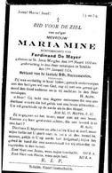MINE Maria °1892 Sint-Joris-Winge +1924 Schilde E De Meyer Doodsprentje Image Mortuaire  Funeral Card Immaginetta - Religion & Esotericism