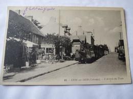 LION-sur-MER (14) : CHEMIN De FER De CAEN à La MER - Voie étroite De 60 - Loco 031T WEIDKNECHT-DECAUVILLE - 1933 - Bahnhöfe Mit Zügen