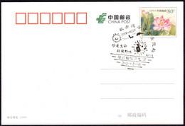 CHINA XuZhou COVID-19 (Cherish Life,Refuse Game;Fight Viruse From The Source[Bat, Pangolin]) Postmark - Enfermedades