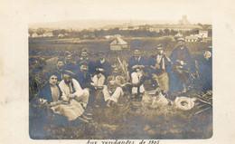 - AUXERRE (89) - Pause Casse-croûte Aux Vendanges De 1905 (carte-photo)  -25065- - Auxerre