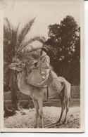 CPA - SCENES ET TYPES - UN BEAU MEHARISTE - EDITIONS LA CIGOGNE 617 - Algerien