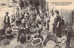 07 ARDECHE Le Triage Et La Préparation Des Fruits Avant L'expédition Enfants Au Travail - Sonstige Gemeinden