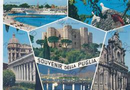 CARTOLINA   SOUVENIR DELLA  PUGLIA,BRINDISI, ALBEROBELLO, FOGGIA, CASTEL DEL MARE, LECCE, BARI,   VIAGGIATA - Bari