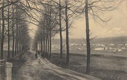 Boitsfort  ,( Bruxelles ), Montagne Au Chat  ,( Vue Rare ) - Watermael-Boitsfort - Watermaal-Bosvoorde
