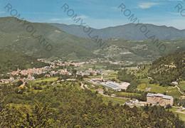 CARTOLINA  CALIZZANO, SAVONA, LIGURIA, MT. 650, PANORAMA, MONTAGNA, VERDE, VIAGGIATA 1981 - Savona