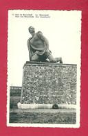 C.P. Breendonk  = Het  Standbeeld - Willebroek