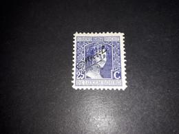 """A8MIX03 LUSSEMBURGO 1915-19 FRANCOBOLLI DEL 1914-19 SOPRASTAMPATI 25 C. """"X"""" - 1914-24 Marie-Adelaide"""