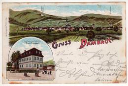 67 : Gruss Aus Dambach : Litho. Couleur Multivues 1902 - Andere Gemeenten