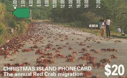 Christmas Island - The Annual Red Crab Migration - Christmas Island
