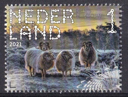 Nederland - Beleef De Natuur - 4 Januari 2021 - Dwingelerveld - Drentse Heideschaap - MNH - Ungebraucht