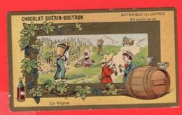 15 Chromos THEME  Le Vin  La Vigne  Viticulture  Raisins  Grapes  Vendages  Calendrier  1877 - Wine