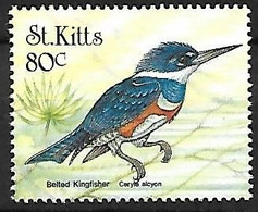 St Kitts - MNH ** 1999 : Belted Kingfisher   - Megaceryle Alcyon - Andere