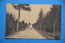 Gedinne-Station 1921: Route De Bouillon Animée - Gedinne