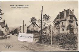 MONTBELIARD Route De Ste Suzanne - Montbéliard
