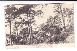 "POSTAL MONASTERIO S.JUAN DE LA PEÑA . JACA (HUESCA-ARAGON) -EDICION F.H. ""PINAR"".ESCRITA DESDE ZARAGOZA SELLO 315 (1929) - Huesca"