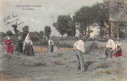 Cpa 1905 LA VIE AUX CHAMPS La Fenaison Paysans Paysannes Râteau ▬ Série B Dugas Et Cie (¬‿¬) ♥ - Cultures
