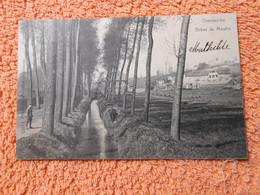Cpa Overijse Overyssche Dreve Du Moulin - Overijse