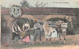 Cpa 1905 LA VIE AUX CHAMPS Entre 2 Feux - Boeufs  Fermière Paysans ▬ Série ? Dugas Et Cie (¬‿¬) ♥ - Autres