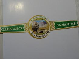 Bague De Cigare FLOR DE CANARIAS  25 X 70 Mm - Anelli Da Sigari