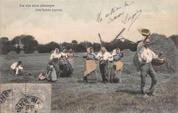 Cpa 1905 LA VIE AUX CHAMPS Une Bande Joyeuse Fenaison Paysans Fermières Rateaux ▬ Série ? Dugas Et Cie (¬‿¬) ♥ - Cultures