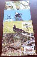Azerbaidjan - 1994 - N°Yv. 163 à 166 - Tetras Lyre / WWF - Maxi Cards / Cartes Maxi - Non Classificati