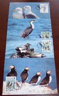 Isle Of Man - 1989 - N°Yv. 408 à 411 - Oiseaux / WWF - Maxi Cards / Cartes Maxi - Non Classificati