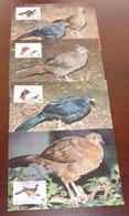 Nicaragua - 1994 - N°Yv. 1911 à 1914 - Chachalaca / WWF - Maxi Cards / Cartes Maxi - Non Classificati