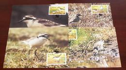 St Helena - 1993 - N°Yv. 586 à 589 - Pluvier / WWF - Maxi Cards / Cartes Maxi - Non Classificati
