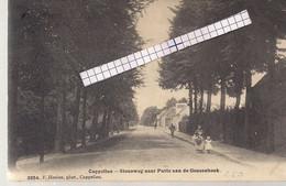 """CAPPELLEN-KAPELLEN """"STEENWEG NAAR PUTTE AAN DE GEUZENHOEK""""HOELEN 3954 UITGIFTE 1908 TYPE 5 - Kapellen"""