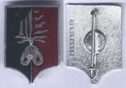 Insigne De La Compagnie Montée Du 2e Régiment Etranger D'Infanterie - Army