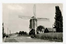 D642 - Stramproy Molen Sint-Jan - Molen - Moulin - Mill - Mühle - - Other