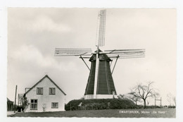 D643 - Swartbroek Molen De Hoop - Molen - Moulin - Mill - Mühle - - Other