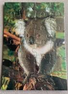 Carte Postale Moderne CPM - Puzzle - Koala - Australie NEUVE - Other