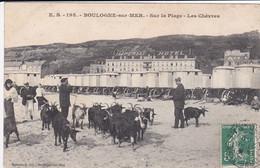 62 BOULOGNE Sur MER Chèvres Sur La Plage Avec Gardien Devant Cabines De Plage Sur Roue En 1909 - Boulogne Sur Mer