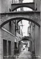 SPOTORNO - VIA CARATTERISTICA ANIMATA - VIAGGIATA 1966 - (rif. C58) - Savona
