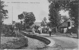 CHAMPAGNEY (Haute-Saône) - Sous Les Chênes. - Other Municipalities