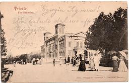 TRIESTE - FERDINANDEO - VIAGGIATA - Trieste