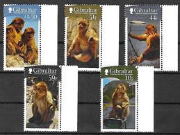 GIBRLTAR - Année 2011 - 5 TP** -  Mi 1437 1439 1440 1441 1442 - Macaques Barbary - Gibraltar