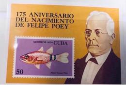CUBA 1974 Felipe Poey 1 Bloc Neuf MNH Poisson YT BF 41 Pesce Poisson Fish Pez Fische - Peces