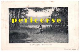 83  Cavalaire  Sous Bois Marin - Sonstige Gemeinden