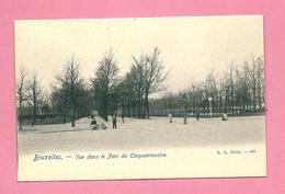 C.P. Bruxelles =  Vue  Dans  Le  Parc  Du  Cinquantenaire - Brussels (City)