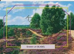 Bladel    [Z31-2.659  - Gelopen Met Postzegel - Sin Clasificación