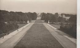 Bruxelles , Photocarte , Panorama Palais Et Parc Royal - Bauwerke, Gebäude