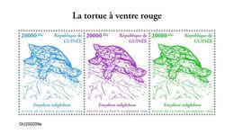 Guinea  2020 Red-bellied Short-necked Turtle. (209a)  OFFICIAL ISSUE - Schildkröten