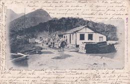 BRAZILIE /  NO ALTO THEREZOPOLIS  1904 - São Paulo
