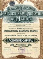 Compagnie Financière Pour L'AGRICULTURE & L'INDUSTRIE Au MAROC - Afrika